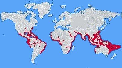 Question5 for Habitat du monde